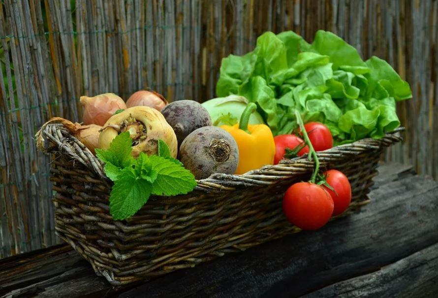 plody ze zahrádky