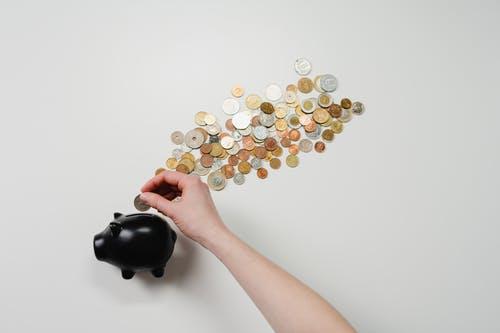 prasátko peníz
